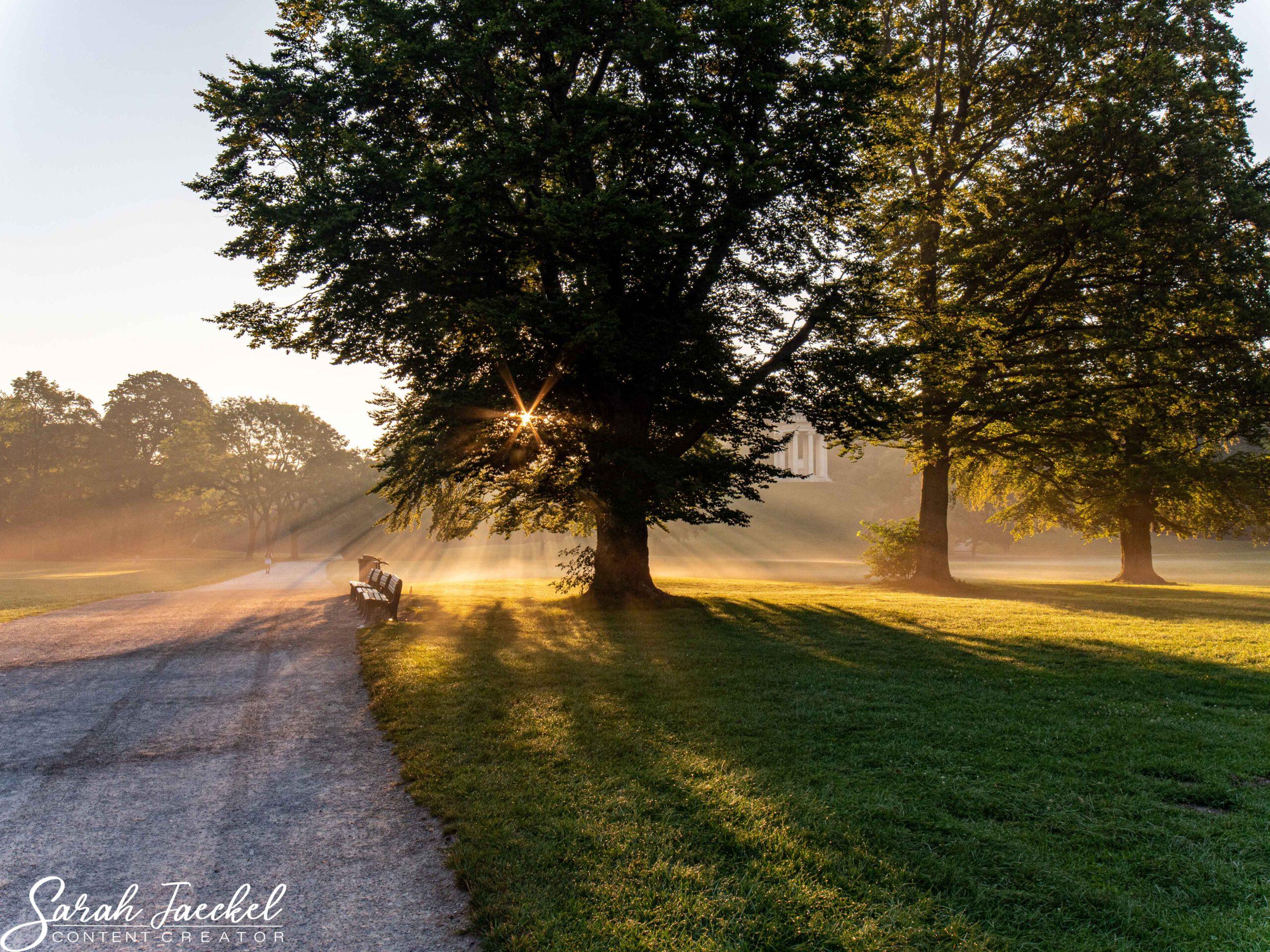 Englischer Garten sunrise in Munich